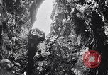 Image of birds and rock formation Clipperton Island, 1943, second 6 stock footage video 65675033679