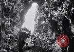 Image of birds and rock formation Clipperton Island, 1943, second 8 stock footage video 65675033679