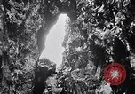 Image of birds and rock formation Clipperton Island, 1943, second 9 stock footage video 65675033679