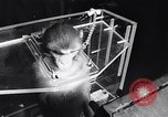 Image of aerospace experiment New York City USA, 1967, second 8 stock footage video 65675033689