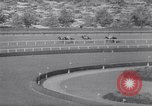 Image of Woodward Stakes New York United States USA, 1967, second 11 stock footage video 65675033691