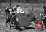 Image of doggy chariot race Baker Oregon USA, 1938, second 8 stock footage video 65675033695
