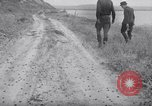 Image of cricket insect Pasco Washington USA, 1938, second 6 stock footage video 65675033906