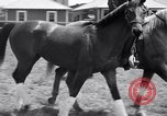 Image of War Admiral Belmont Park New York USA, 1938, second 7 stock footage video 65675033910