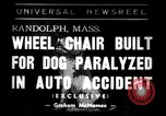 Image of paralyzed dog Randolph Massachusetts USA, 1938, second 1 stock footage video 65675033914