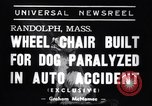 Image of paralyzed dog Randolph Massachusetts USA, 1938, second 3 stock footage video 65675033914
