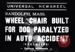 Image of paralyzed dog Randolph Massachusetts USA, 1938, second 6 stock footage video 65675033914