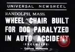 Image of paralyzed dog Randolph Massachusetts USA, 1938, second 7 stock footage video 65675033914