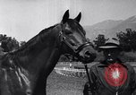 Image of Seabiscuit California United States USA, 1940, second 2 stock footage video 65675033957