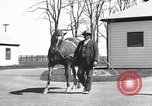 Image of Man o War Lexington Kentucky USA, 1938, second 5 stock footage video 65675033970