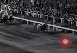 Image of race horse Bold Venture Baltimore Maryland USA, 1961, second 12 stock footage video 65675034146