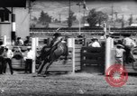 Image of horse and bull ride San Jose California USA, 1961, second 10 stock footage video 65675034156