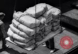Image of Stocking supplies in Berlin Berlin West Germany, 1961, second 12 stock footage video 65675034165