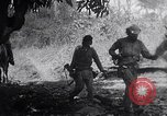 Image of Castro forces engage Batista forces in all out battles  Cuba, 1958, second 3 stock footage video 65675034276