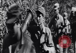 Image of Bay of Pigs invasion Cuba, 1961, second 11 stock footage video 65675034333