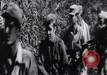 Image of Bay of Pigs invasion Cuba, 1961, second 12 stock footage video 65675034333