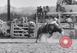 Image of Palm Springs Rodeo California United States USA, 1953, second 6 stock footage video 65675034644