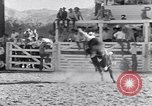 Image of Palm Springs Rodeo California United States USA, 1953, second 7 stock footage video 65675034644