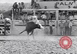 Image of Palm Springs Rodeo California United States USA, 1953, second 8 stock footage video 65675034644
