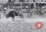 Image of Palm Springs Rodeo California United States USA, 1953, second 12 stock footage video 65675034644