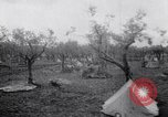 Image of French troops Italy, 1942, second 5 stock footage video 65675034677