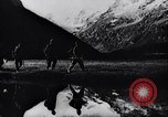 Image of German Mountain troops Dalar Baschi Peak Caucasia, 1942, second 4 stock footage video 65675034747