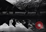 Image of German Mountain troops Dalar Baschi Peak Caucasia, 1942, second 7 stock footage video 65675034747