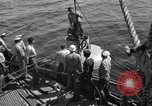 Image of Atlantic convoy Iceland, 1941, second 10 stock footage video 65675034759