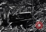 Image of construction of Ledo Road Manpin Burma, 1944, second 2 stock footage video 65675034791