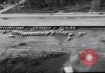 Image of trucks parked Ledo Road Tingkawk Burma, 1945, second 9 stock footage video 65675034822