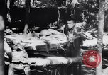 Image of Colonel Seagrave Ledo Burma, 1943, second 7 stock footage video 65675034830