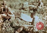 Image of prisoners Saipan Northern Mariana Islands, 1944, second 2 stock footage video 65675034834