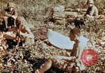 Image of prisoners Saipan Northern Mariana Islands, 1944, second 4 stock footage video 65675034834