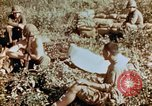 Image of prisoners Saipan Northern Mariana Islands, 1944, second 6 stock footage video 65675034834