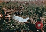 Image of prisoners Saipan Northern Mariana Islands, 1944, second 12 stock footage video 65675034834