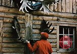 Image of Moose antlers being fastened to a log cabin Alaska USA, 1954, second 6 stock footage video 65675034930