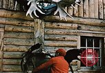 Image of Moose antlers being fastened to a log cabin Alaska USA, 1954, second 12 stock footage video 65675034930