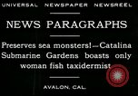 Image of woman fish taxidermist Avalon California USA, 1930, second 5 stock footage video 65675035089