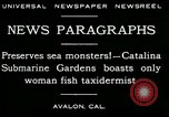 Image of woman fish taxidermist Avalon California USA, 1930, second 8 stock footage video 65675035089
