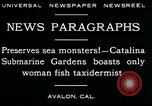 Image of woman fish taxidermist Avalon California USA, 1930, second 9 stock footage video 65675035089