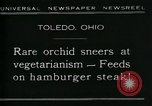 Image of Carnivorous Cobra Lilies Toledo Ohio USA, 1930, second 2 stock footage video 65675035101