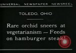 Image of Carnivorous Cobra Lilies Toledo Ohio USA, 1930, second 4 stock footage video 65675035101