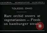Image of Carnivorous Cobra Lilies Toledo Ohio USA, 1930, second 6 stock footage video 65675035101