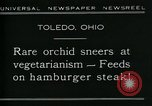 Image of Carnivorous Cobra Lilies Toledo Ohio USA, 1930, second 9 stock footage video 65675035101