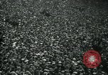 Image of rugby match Paris France, 1930, second 10 stock footage video 65675035112