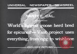 Image of goose herd Santee California USA, 1932, second 3 stock footage video 65675035145