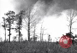 Image of forest fire Cochran Oregon USA, 1932, second 11 stock footage video 65675035161