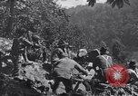 Image of Battle of Blair Mountain West Virginia United States USA, 1921, second 1 stock footage video 65675035170