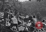 Image of Battle of Blair Mountain West Virginia United States USA, 1921, second 5 stock footage video 65675035170