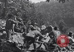 Image of Battle of Blair Mountain West Virginia United States USA, 1921, second 6 stock footage video 65675035170